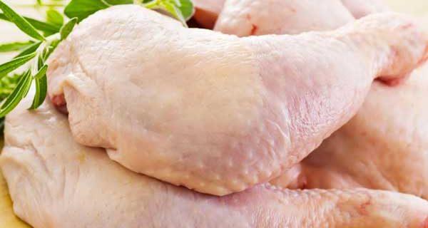 batterio pollo